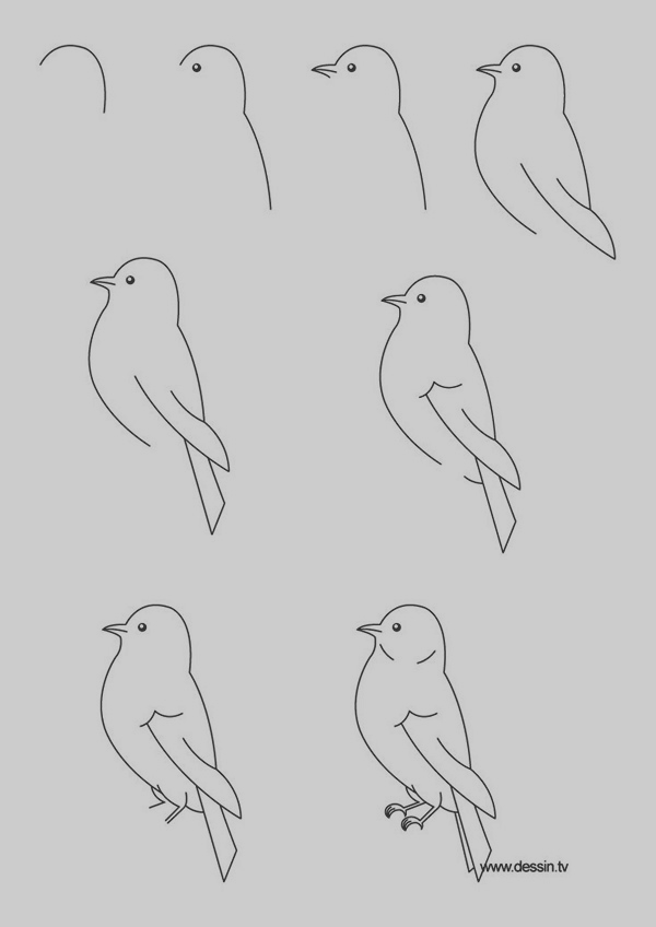 easy-step-by-step-art-drawings-to-practice-6