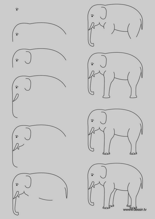 easy-step-by-step-art-drawings-to-practice-8