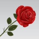 Profile picture of rose